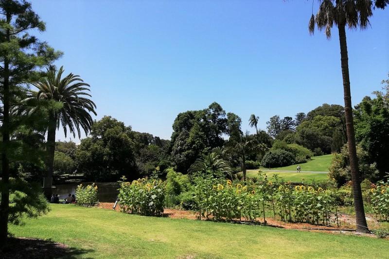 Botanischer Garten in Melbourne Australien