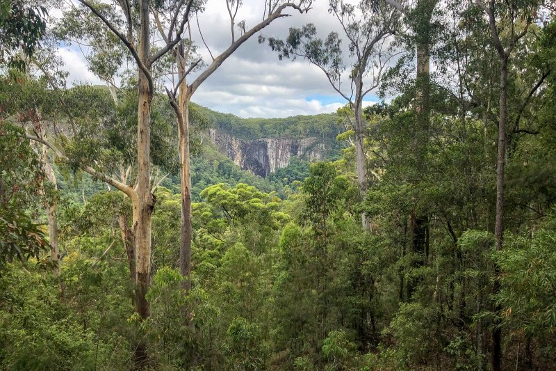 Busch Australien
