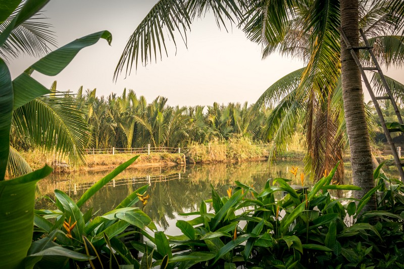 Abseits der Touristenpfade in Hoi An