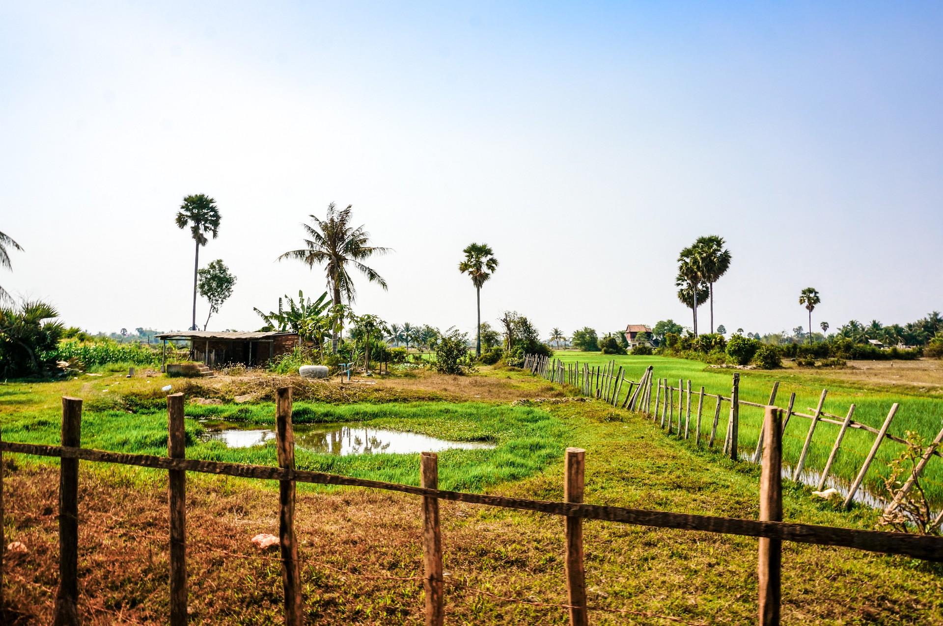 Landleben in Kambodscha