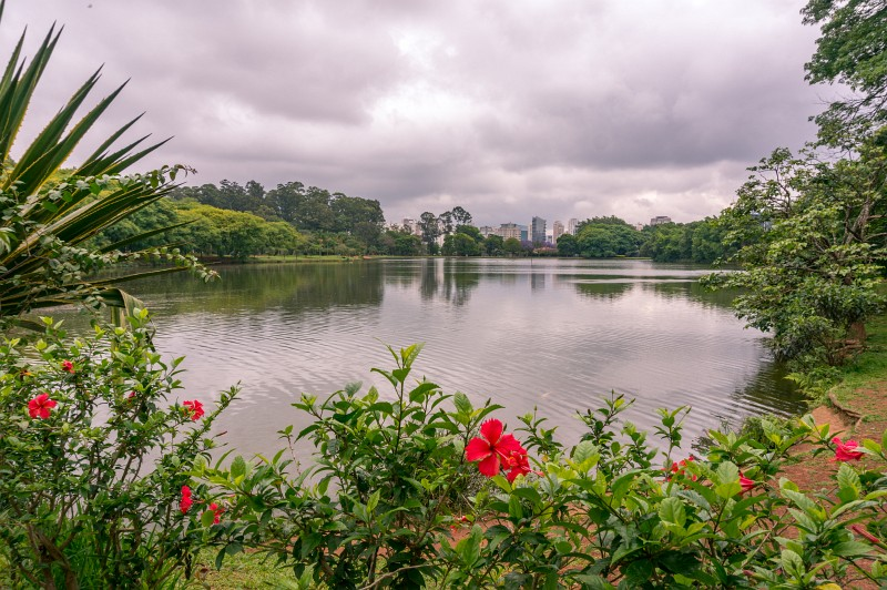 Park in Sao Paulo