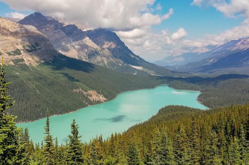 Peyto Lake Rocky Mountains in Kanada